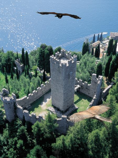 Castello Vezio cetrería