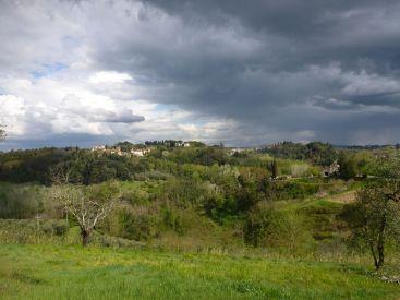 Paysage | Landscape