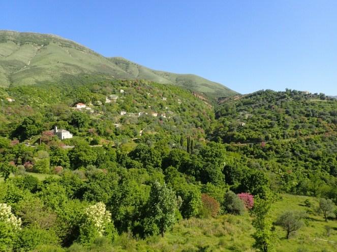 Village de Muzine | Muzine village