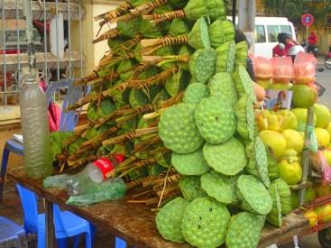 Phnom-Penh : fleurs de lotus | lotus flowers