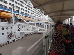 Ce n'est pas le bon bateau | It's not the right boat