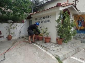On vide le tuyau dans les plantes | We empty the hose in flower pots