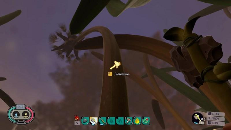 Grounded Dandelion.jpg