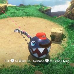 Paint Flower Super Mario Powers | Gardening: Flower and