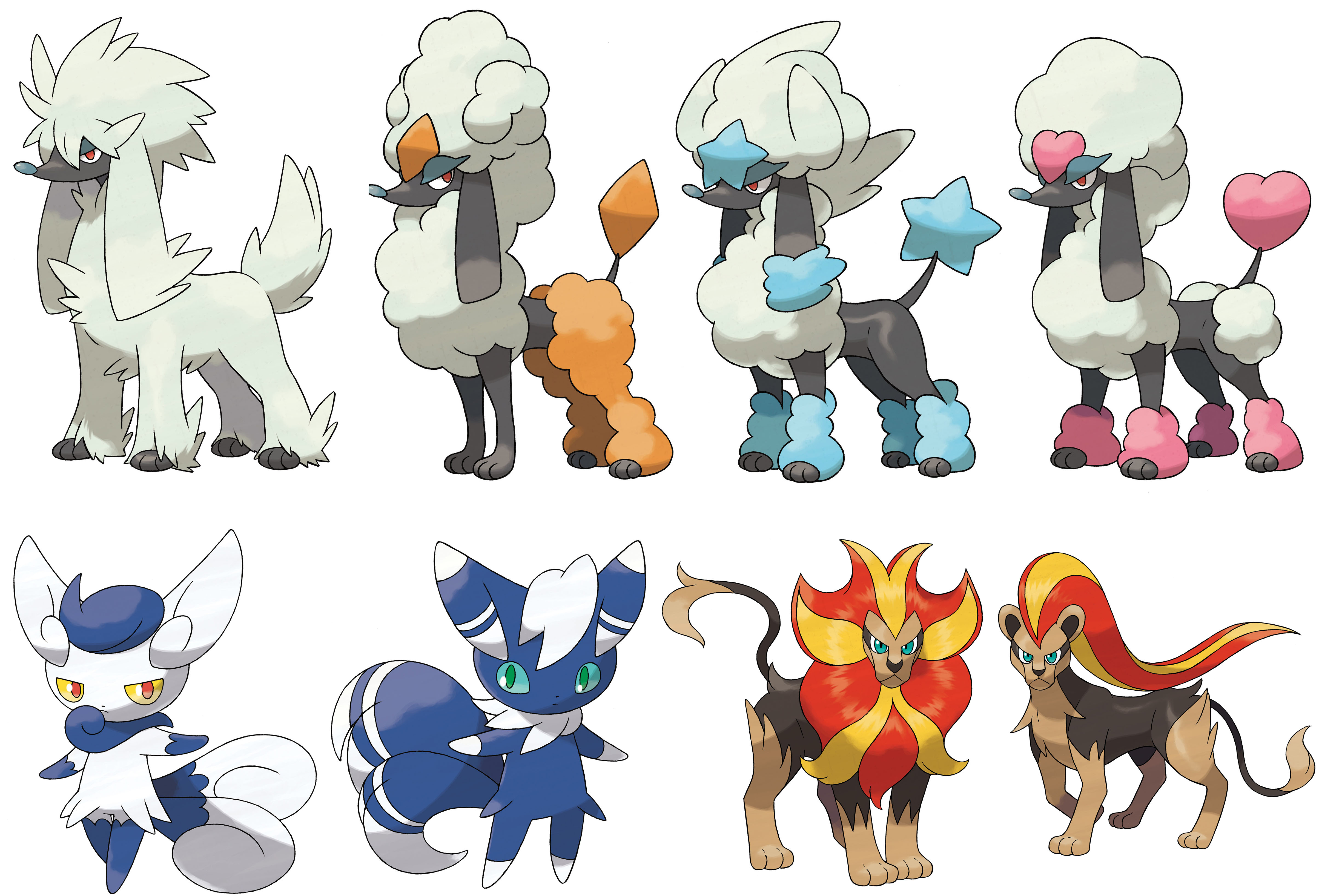 Xy Male Hairstyles