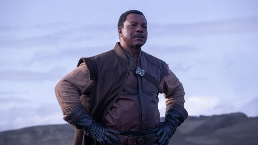 The Mandalorian: Every Character/Cameo in Season 1 and Upcoming Character in Season 2 4