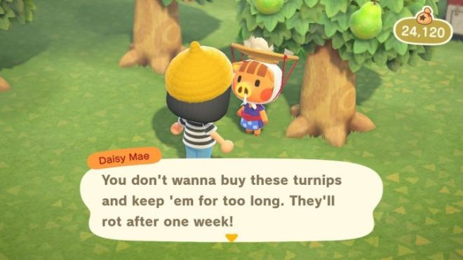 Daisymae-720x405 These Animal Crossing Turnip Tools Make Playing the Stalk Market Easier | IGN
