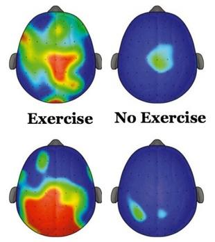 brain exercise 2