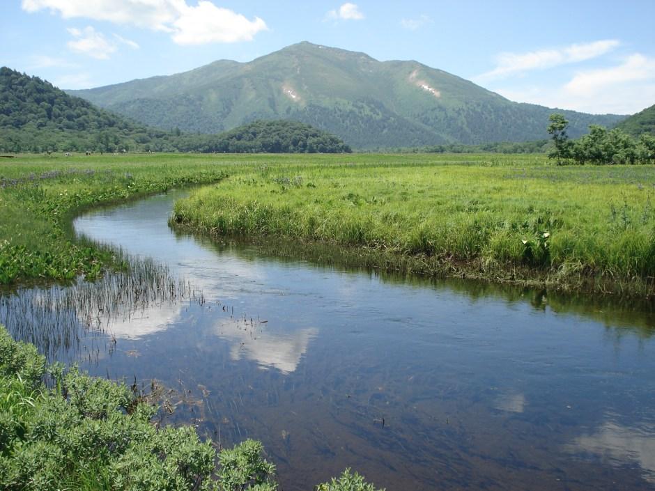 north-tokyo-oze