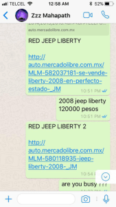 celand tulum bryndis helgadottir escort service new car gift by ozen rajneesh red jeep
