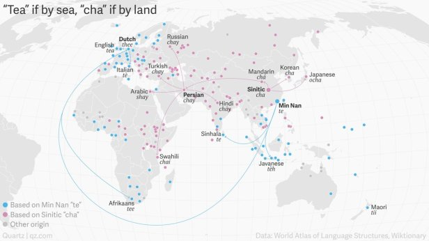 How the word tea spread around the world