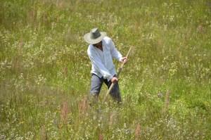 Doğu Karadeniz Bölgesinde arazi, toprak ve tarım ile ilgili terimler