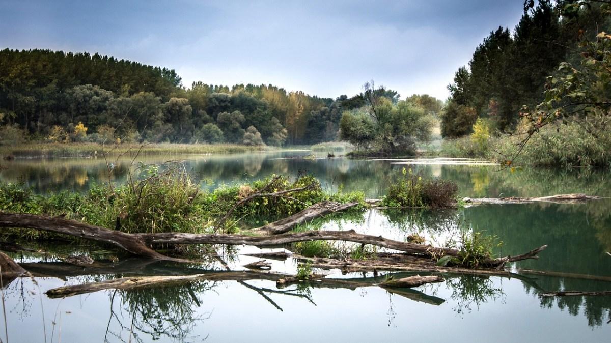 Karadeniz'e Dökülen Nehirler