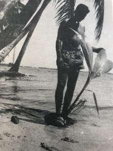 palm tree Tahiti vintage