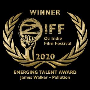 Emerging Talent Award