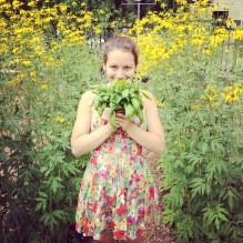 Holding Fresh Basil in front of Coneflowers