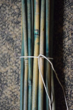 wooden stakes tied together