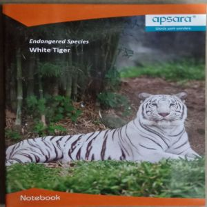 Apsara graph notebook 64 pages