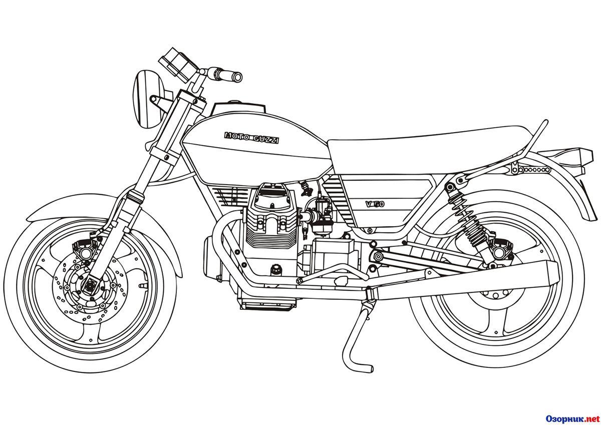 Moto Cuzzi