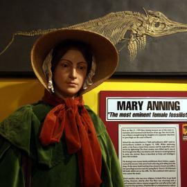 Mary Anning and Ammonite