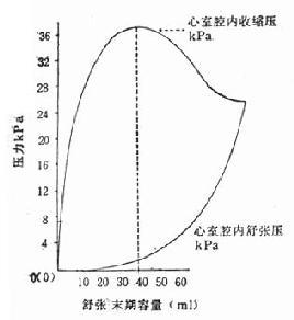 急診醫學/心室的收縮功能 - A+醫學百科