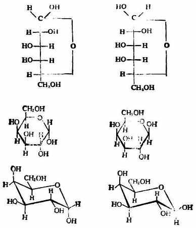 醫用化學/單糖 - A+醫學百科