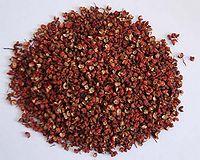 花椒,大紅袍。也是中國菜中常用的香料,查閱花椒英文怎么說,花椒的功效與作用_中藥花椒_花椒是什麼_花椒的用法用量_A+醫學百科
