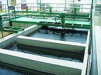 污水處理 - A+醫學百科