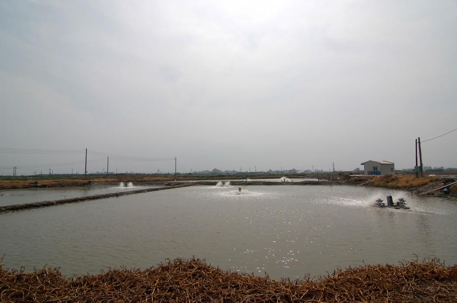 永安漁塭 - 旅遊美食資料庫