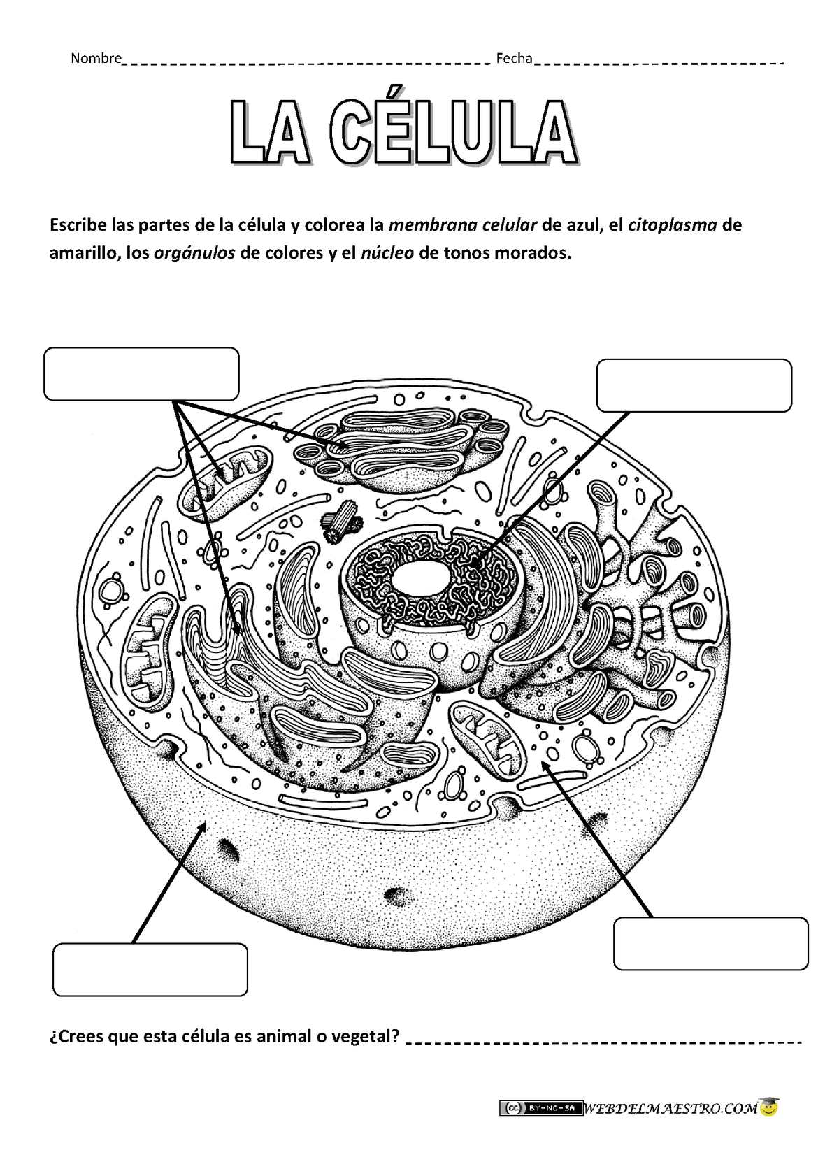 Diagram Of 2002 Warrior Yfm350xpc Yamaha Atv Front Fender Diagram