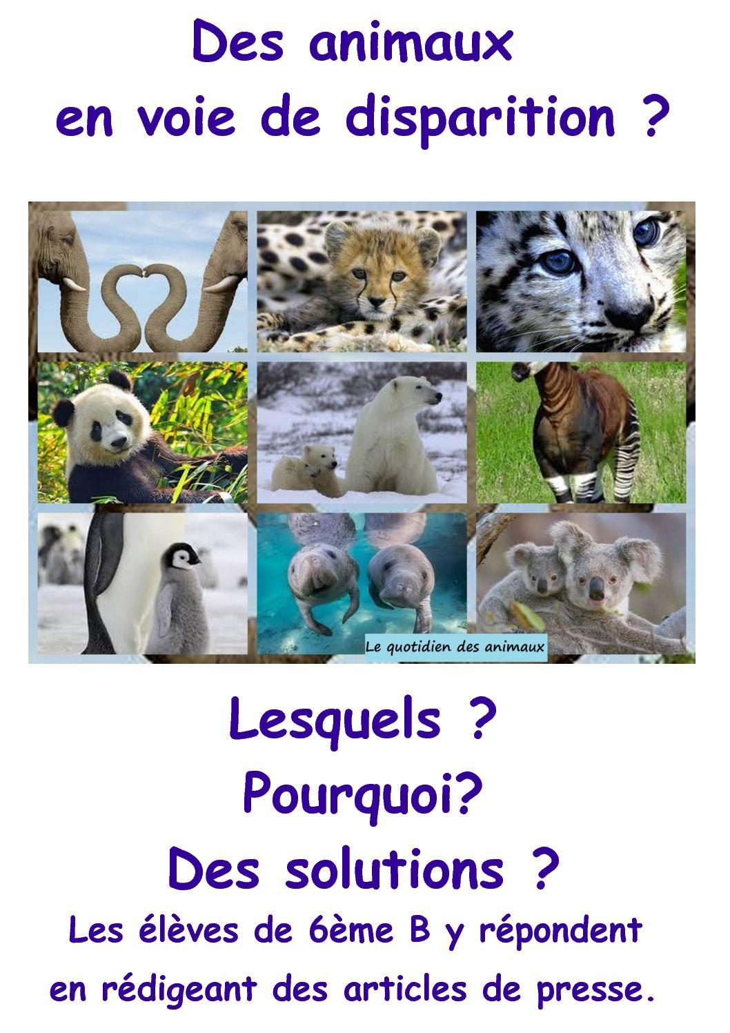 Animal En Voie De Disparition : animal, disparition, Calaméo, Animaux, Disparition, 6ème