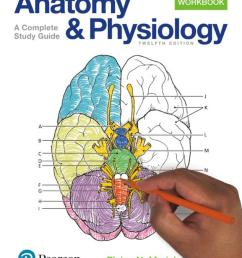 anatomy and physiology coloring workbook a complete study guide 12th edition 2017 [ 1231 x 1600 Pixel ]