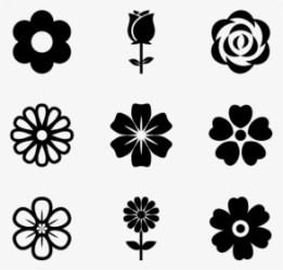 Flower Vector PNG Images Free Transparent Flower Vector Download KindPNG