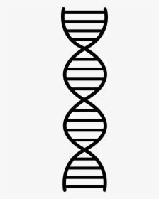 Dna Easy Drawing : drawing, Emoji, Include, Double, Helix,, Petri, Dish,,, Download, Kindpng