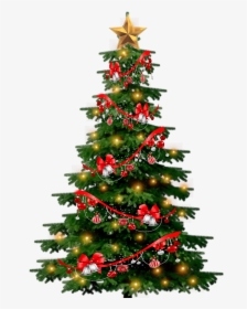 Tree Christmas Png : christmas, Christmas, Images,, Transparent, Download, KindPNG