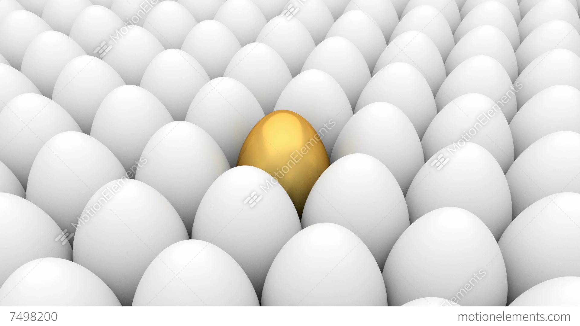 Golden Egg And White Eggs Stock Animation  7498200