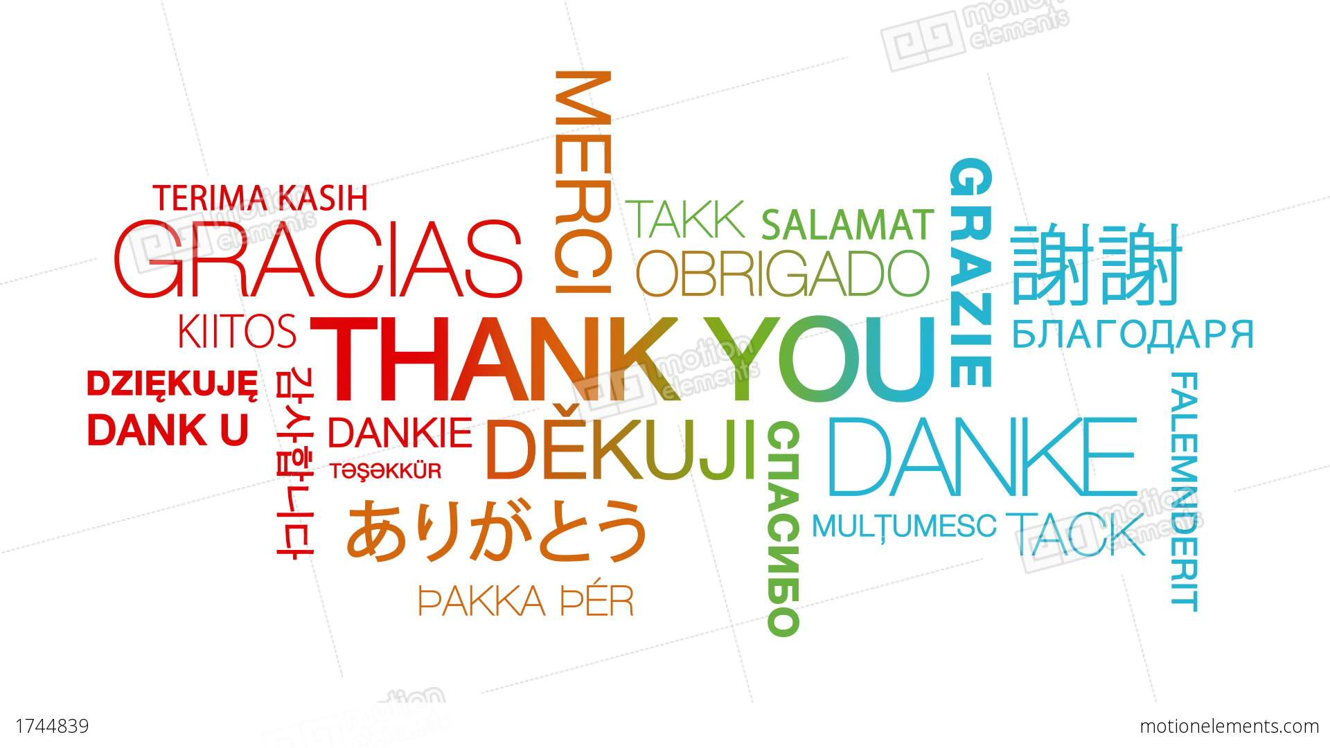 Thank You In Different Languages Stock Animation