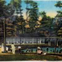 Blue Spring and McIntyre Spring, Withlacoochee River, Brooks County, GA, 1903-11