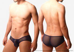 blue leader,半透明,網紗,U型,三角褲,男內褲,translucent,mesh,u-shape,briefs,boxers,underwear