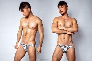 animal,pattern,fitted,low waist,briefs,underwear