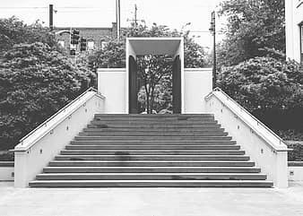 Steps Railing Gate Entrance City Trees Black And White Pikist | Black And White Staircase Railing | Colour Combination | House | Indoor | 1920'S | Floors