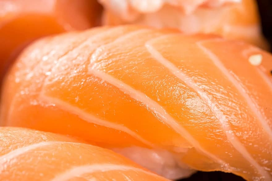 sushi, niguiri, japanese, salmon