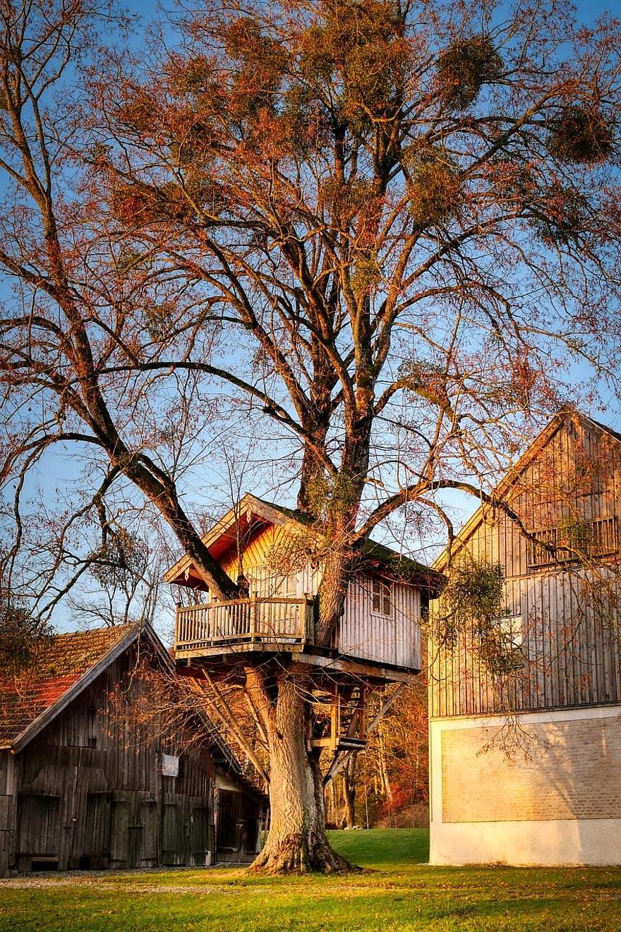 Treehouse Tree Farm Barn Nesting Help Nature House Landscape Children Log Shelter Pikist
