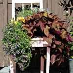 Stuhl Deko Pflanze Dekorativ Blumen Bluhen Ornament Natur Dekoration Blickfang Zusammensetzung Pikist