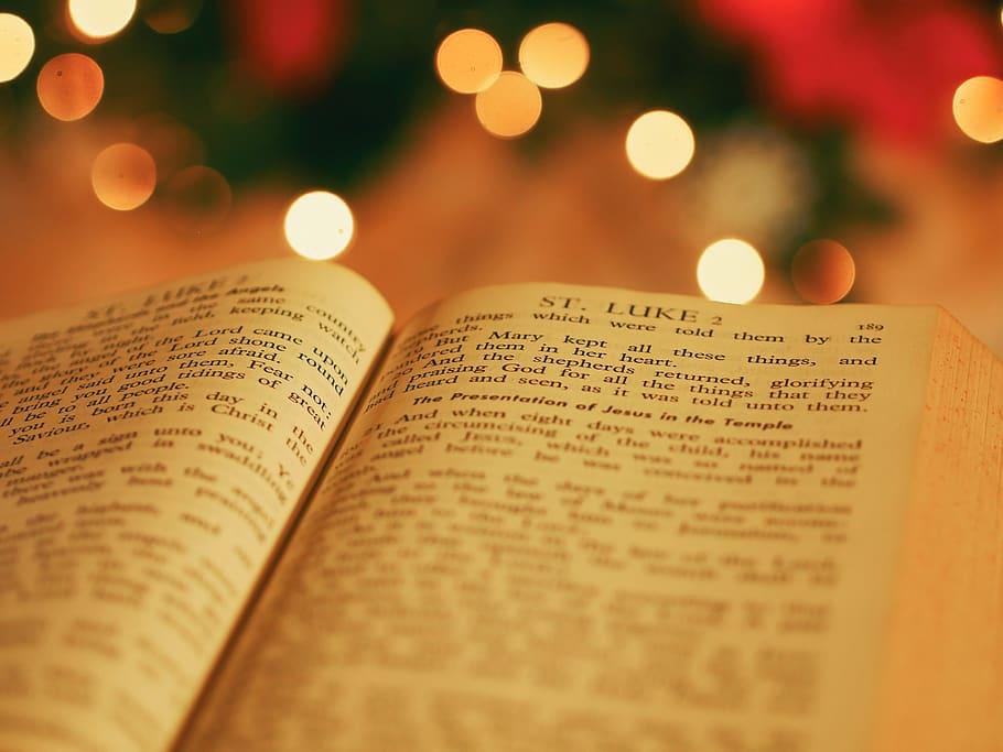 성탄절 관련 글 모음 -누가복음