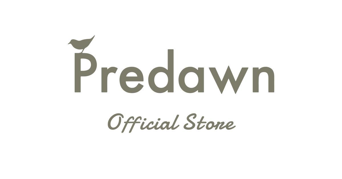Predawn Store