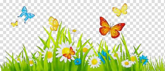 Watercolor Flower Paint Wet Ink Lawn Animation Computer Animation Garden Cartoon transparent background PNG clipart HiClipart