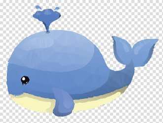 Turtle Whales Killer Whale Beluga Whale Blue Whale Cartoon Cetacea Tortoise transparent background PNG clipart HiClipart