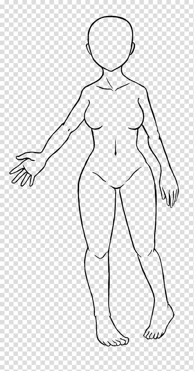 Body Base Female : female, Female, Base/, Lineart, Transparent, Background, Clipart, HiClipart