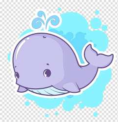 Whale Whales Cartoon Drawing Blue Whale Cetacea Dolphin transparent background PNG clipart HiClipart